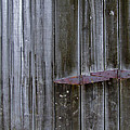 Barn Hinge by Richard Gregurich