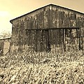 Barn In Brown by Michelle Young