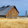 Barn In Calgary by Randy Harris