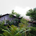 Barn In The Storm by Stephani JeauxDeVine