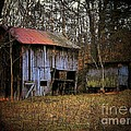 Barn In The Woods by Joyce Kimble Smith