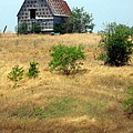 Barn On A Hill by Amy Hosp