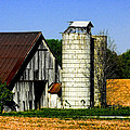 Barn Out Back by Kristie  Bonnewell