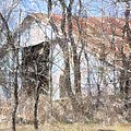 Barn Through Trees by Donna G Smith