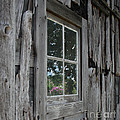 Barn Window Reflection by Grace Grogan