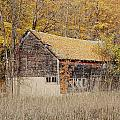 Barn With Autumn Leaves by Ron Weathers