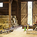 Barn With Hay Bales And Farm Equipment by Elena Elisseeva