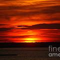 Barnegat Bay Sunset by Tessa Murphy