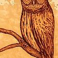 Barred Owl Coffee Painting by Georgeta  Blanaru