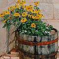 Barrel Of Flowers by Ian  MacDonald