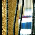 Bars by Lenore Senior