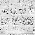 Baseball Cartoons, 1859 by Granger