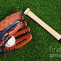 Baseball Glove Bat And Ball On Grass by Richard Thomas