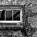Basement Window by Tony Ramos