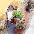 Basil Delivery In Eze France by Elaine Frink