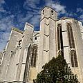 Basilica Of Saint Mary Madalene Back View by Lainie Wrightson