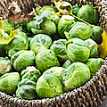Basket Of Brussels Sprouts by Elena Elisseeva