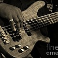Bass by Chris Berry