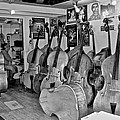 Bass Fiddle Convention by Eric Tressler