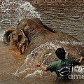 Bath Time In Laos by Bob Christopher