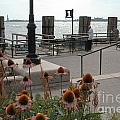 Battery Park by Mark Gilman