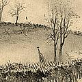 Battle Of Kernstown, 1862 by Granger