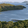 Bay And Outlying Islands Off Rinca by Cyril Ruoso