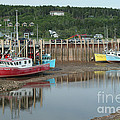Bay Of Fundy - Low Tide by Ted Kinsman