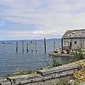 Bayside Boat Barn by Pamela Patch