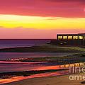 Beach At Sunset by Carlos Caetano