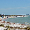 Beach Day On Honeymoon Island by Carol  Bradley