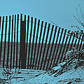Beach Fence by Mary Anne Williams