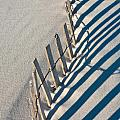 Beach Graphic by Janice M LeCocq