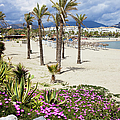 Beach In Puerto Banus by Artur Bogacki