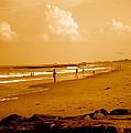 Beach Life by Joe  Burns