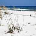Beach No. 5 by Toni Hopper