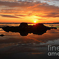 Beach Reflections by Kami McKeon