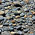 Beach Rocks by Rosie McPherson