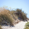 Beach Sand Dunes I by Michelle Wrighton