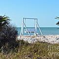 Beach Swing by Carol  Bradley