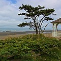 Beachside Gazebo by Heidi Smith