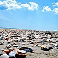 Beachy Delight by Lizabeth Hanes