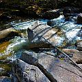 Bear River 2 by George Ramos