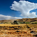 Beating The Strom by Robert Bales