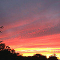 Beauitful Sunset by MaryLee Parker