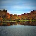 Beautiful Autumn by Mikki Cucuzzo