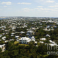 Beautiful Bermuda  by Luke Moore