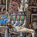 Beautiful Carousel Horse by Garry Gay