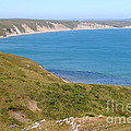 Beautiful Coastline Of Point Reyes California . 7d16050 by Wingsdomain Art and Photography