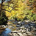 Beautiful Fall Scene by Cheryl Davis